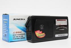 Радиоприемник JC 818 AC